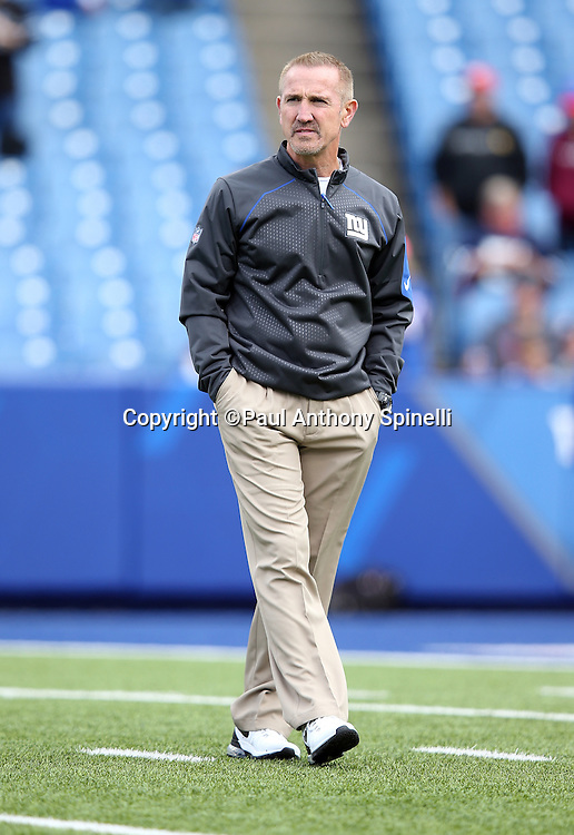 New York Giants defensive coordinator Steve Spagnuolo watches pregame warmups before the 2015 NFL week 4 regular season football game against the Buffalo Bills on Sunday, Oct. 4, 2015 in Orchard Park, N.Y. The Giants won the game 24-10. (©Paul Anthony Spinelli)