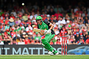 17th February 2019, Marvel Stadium, Melbourne, Australia; Australian Big Bash Cricket League Final, Melbourne Renegades versus Melbourne Stars; Marcus Stoinis of the Melbourne Stars watches his shot as the ball goes high