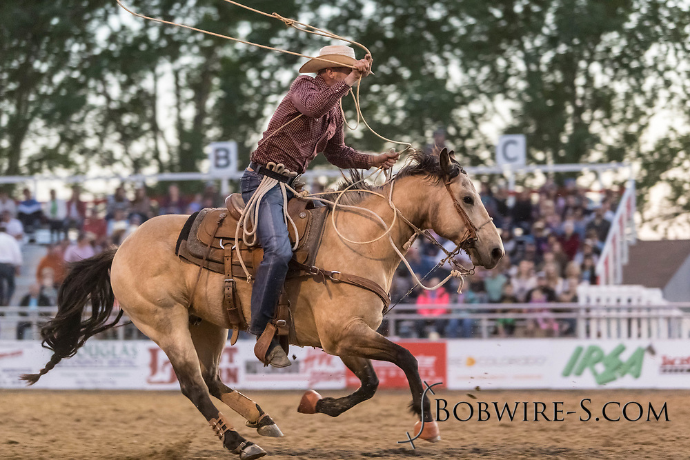 Tie-down roper Trevor Thiel makes his run during the second performance of the Elizabeth Stampede on Saturday, June 2, 2018.