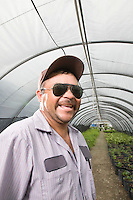 Man standing inside greenhouse