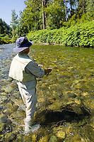 A 70 year old man fly fishing in the Cedar River, Western Washington, USA.