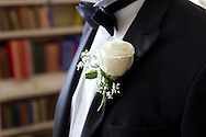Bridegroom, Tuxedo, Rose, Buttonhole, Bow Tie,