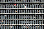 rows of mini Buddhas at Zenkoji Shrine Nagano Japan