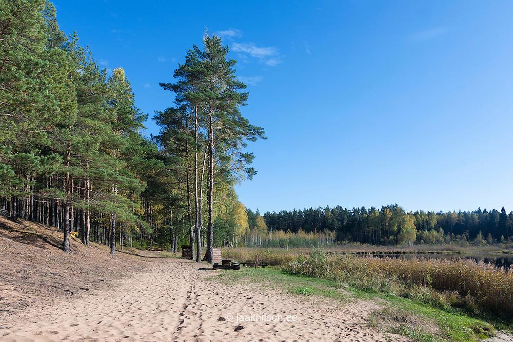 Campfire site in Karula, Valga county, Estonia. Rest area at Õdri lake.