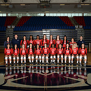 FAU Volleyball 2015