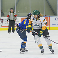 3rd year forward Emma Waldenberger (9)  of the Regina Cougars of the Regina Cougars in action during the Women's Hockey Home Game on October 15 at Co-operators arena. Credit: Arthur Ward/Arthur Images