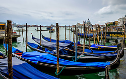 Gondolas on the Grand Canal near St. Mark's Square (Piazza San Marco) in Venice, Italy<br /> <br /> (c) Andrew Wilson | Edinburgh Elite media
