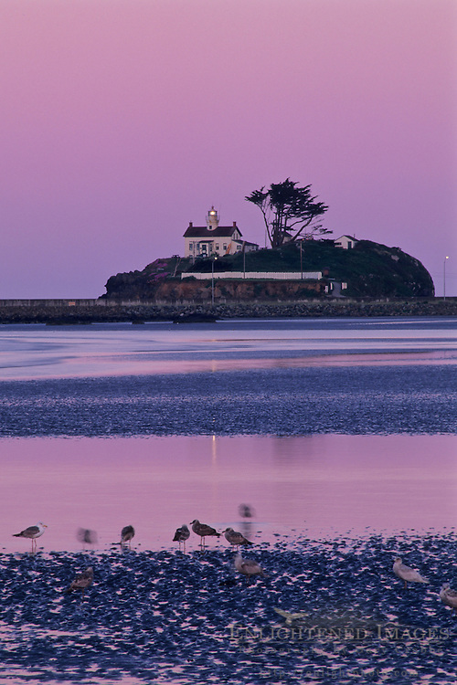 Battery Point Lighthouse at dawn, Crescent City, California
