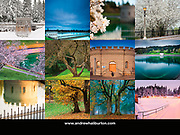 Mount Tabor Park 2019 Calendar Back Cover, Portland, Oregon