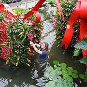 Kew Garden Extravaganza