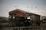 Lactivité industrielle portuaire et donc une grande partie des emplois de la population dIshinomaki furent réduites à néant. Les infrastructures ont disparu ou ont été laissées à labandon. Certains stocks de poisson datant davant le 11 mars sont toujours dans des hangars, à létat de décomposition. Le nettoyage de ces zones sétendra encore sur de nombreux mois.