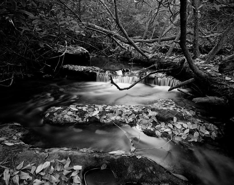 Chester Creek - North Georgia - Chattahoochee National Forest - <br /> Mamiya 7II/43mm lens/Ilford Film