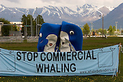 Hundreds of Greenpeace supporters parade through Anchorage, Alaska - venue for the annual International Whaling Commission meeting - as part of a global day of activities with thousands of people across twenty countries and more than fifty cities - to send a message to delegates at the Commission. ..Hundreds of thousands of whales die every year because of human impacts such as pollution, ships strikes, climate change and being caught in nets, yet the Commission will focus discussion on where, when and how to hunt them. ..copyright: Walsh/Greenpeace