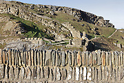 Wall of the lower ward on the mainland, and behind, the inner ward and great hall of Tintagel Castle, built by Richard, 1st Earl of Cornwall in the 13th century, Tintagel Island, Cornwall, England. The ruined castle is linked with Arthurian Legend, as Geoffrey of Monmouth cited it as the place of conception of King Arthur in his 12th century book, History of the Kings of England. The site is managed by English Heritage. Picture by Manuel Cohen