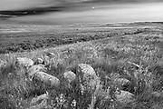 Grasslands, Grasslands National Park, Saskatchewan, Canada<br />Grasslands National Park<br />Saskatchewan<br />Canada
