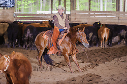 May 20, 2017 - Minshall Farm Cutting 3, held at Minshall Farms, Hillsburgh Ontario. The event was put on by the Ontario Cutting Horse Association. Riding in the 1,000 Amateur Class is Alan Garmiss on Qb Tilly Highbrow Cd owned by the rider.