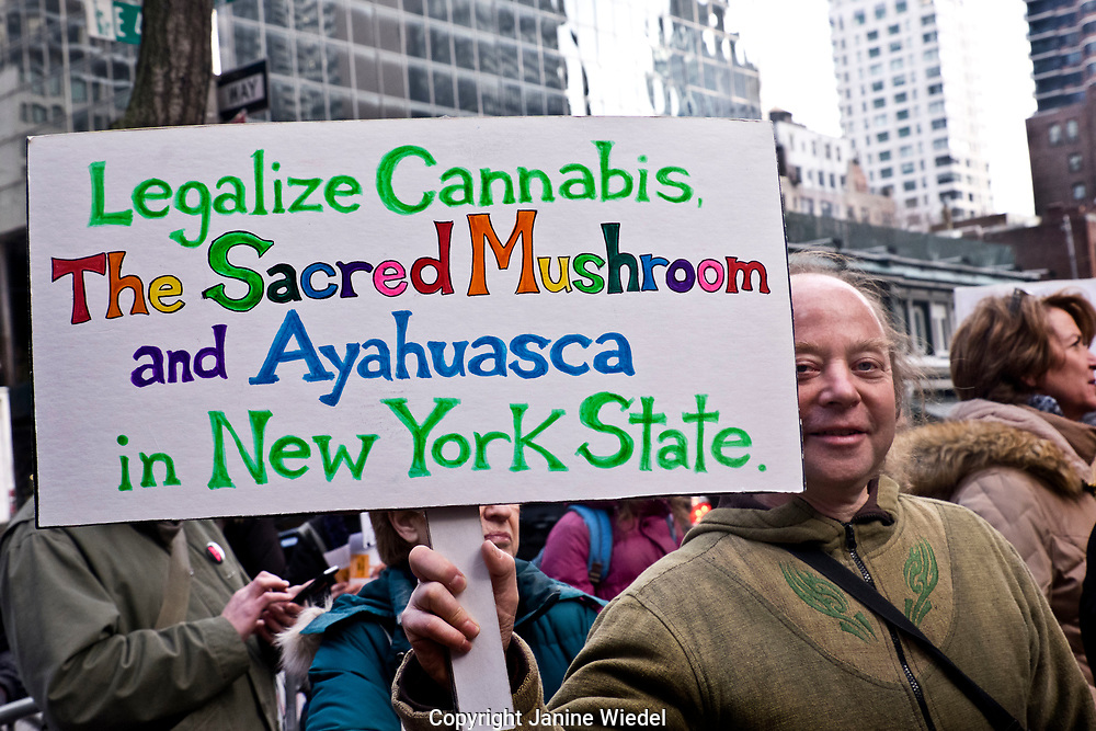 Man with Legalize Cannabis poster at Environmental protest in New York City 2nd Feb 2017