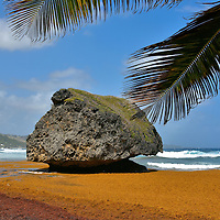 Bathsheba Rock in Bathsheba, Barbados<br />