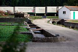 UK ENGLAND HAMPSHIRE ST MARY BOURNE 12AUG06 - Watercress production and packaging facility near St. Mary Bourne, Hampshire. Local residents accuse the company's controversial practices of applying nutrients and salad washing to have caused environmental damage in the Bourne valley...jre/Photo by Jiri Rezac..© Jiri Rezac 2006..Contact: +44 (0) 7050 110 417.Mobile:  +44 (0) 7801 337 683.Office:  +44 (0) 20 8968 9635..Email:   jiri@jirirezac.com.Web:    www.jirirezac.com..© All images Jiri Rezac 2006 - All rights reserved.