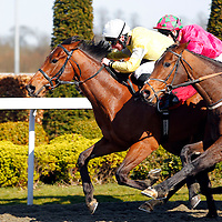 Admiralofthesea and Adam Beschizza winning the 3.30 race