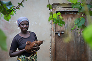 Poultry farmer Kristina Daniel Haule, 55, with some of her chickens in Lundusi, Tanzania. Haule is benefitting from the CRS's Soya ni Pesa (Soybeans are Money) program, a USDA-funded project which links smallholder chicken farmers with markets. The project helps farmers get a foothold in the poultry market by providing no interest loans that provide them with 50 day old chicks and on-going technical support and training to help the farmers raise their chickens to produce eggs for sale on a daily basis.