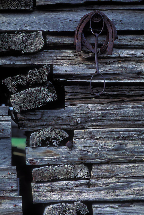 Canada, Saskatchewan, Killaly, Detail of log building on abandoned prairie farm on autumn afternoon