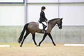 01 - 05th Feb - Open Dressage