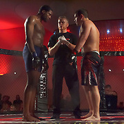 Live MMA Event