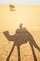 The shadow of a man riding a camel and taking a picture of his shadow on the barren desert ground. Thar Desert, Rajashan, India.