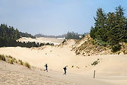 Sand dunes at Oregon Dunes Overlook Trailhead; Oregon Dunes National Recreation Area, Siuslaw National Forest, Oregon Coast.