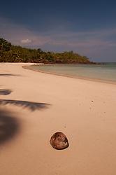 Coconut at Devil's Beach, Turtle Island, Yasawa Islands, Fiji