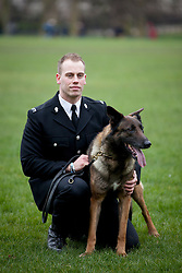 © Licensed to London News Pictures. 21/02/2013. London, UK. Janus, a Malinois Belgian Shepherd police dog from Birmingham with 433 arrests to his name, is seen with his handler PC Dan Thomas, at the photocall for the finalists of the 'Friends for Life' competition in London today (21/02/2013). The Kennel Club's 'Friends for Life' competition, which has been running since 2006, celebrates heart-warming stories of friendship in adversity, the dog that the public votes as the winner will be presented with a trophy in the main arena during Crufts at the Birmingham NEC on the 10th March. Photo credit: Matt Cetti-Roberts/LNP