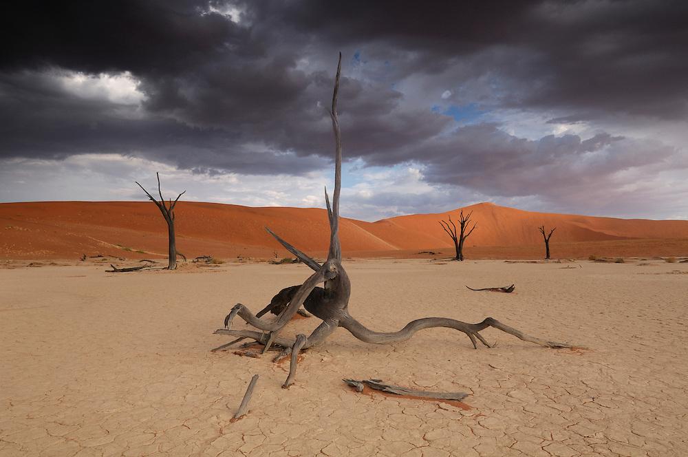 Dead Vlei, Sand Dunes, Sossusvlei area, Namib Naukluft National Park, Hardap Region, Namibia..