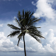 Clouds gather off shore in Palm Beach Wednesday October 5, 2016, as Floridians get ready for the arrival of Hurricane Matthew. Warnings are in place along much of Florida's Atlantic coastline, coastline, for Category 3 Hurricane Matthew.<br />