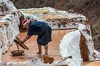 Maras, Peru - July 23, 2013: woman working at Maras salt mines in the peruvian Andes at Cuzco Peru on july 23, 2013