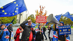 © Licensed to London News Pictures. 05/11/2019. LONDON, UK.  Remain supporters protest outside the Houses of Parliament.  Inside, MPs are making their final statements on the day before Parliament is dissolved ahead of the General Election on 12 December, where each parties stance on Brexit will have a significant affect on the voting.  Photo credit: Stephen Chung/LNP