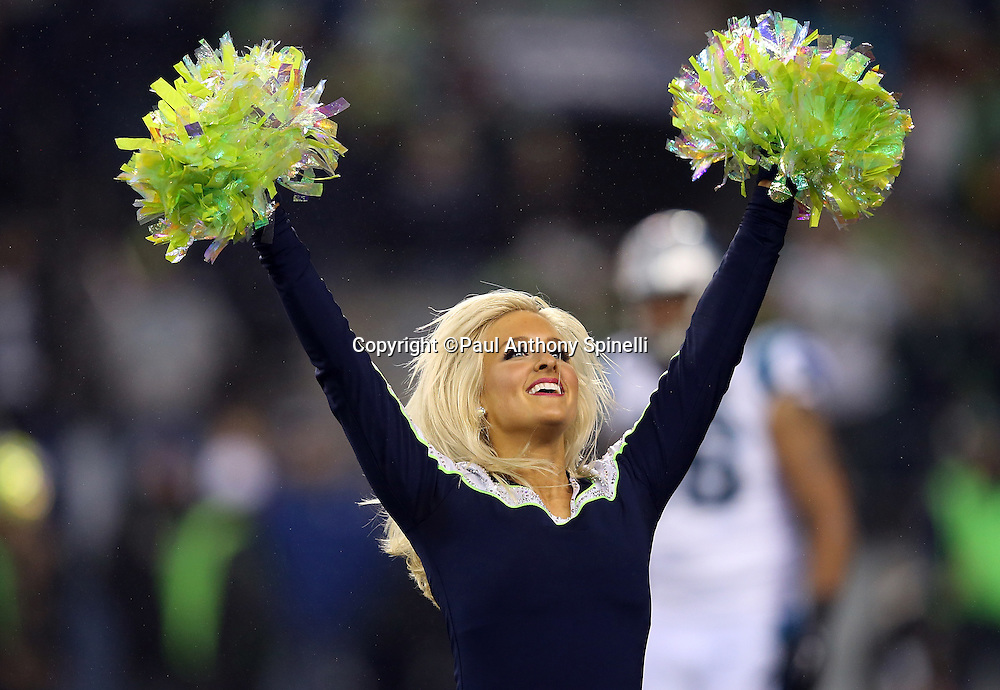 A Seattle Seahawks Sea Gals cheerleader waves her pom poms as she does a dance routine during the NFL week 19 NFC Divisional Playoff football game against the Carolina Panthers on Saturday, Jan. 10, 2015 in Seattle. The Seahawks won the game 31-17. ©Paul Anthony Spinelli