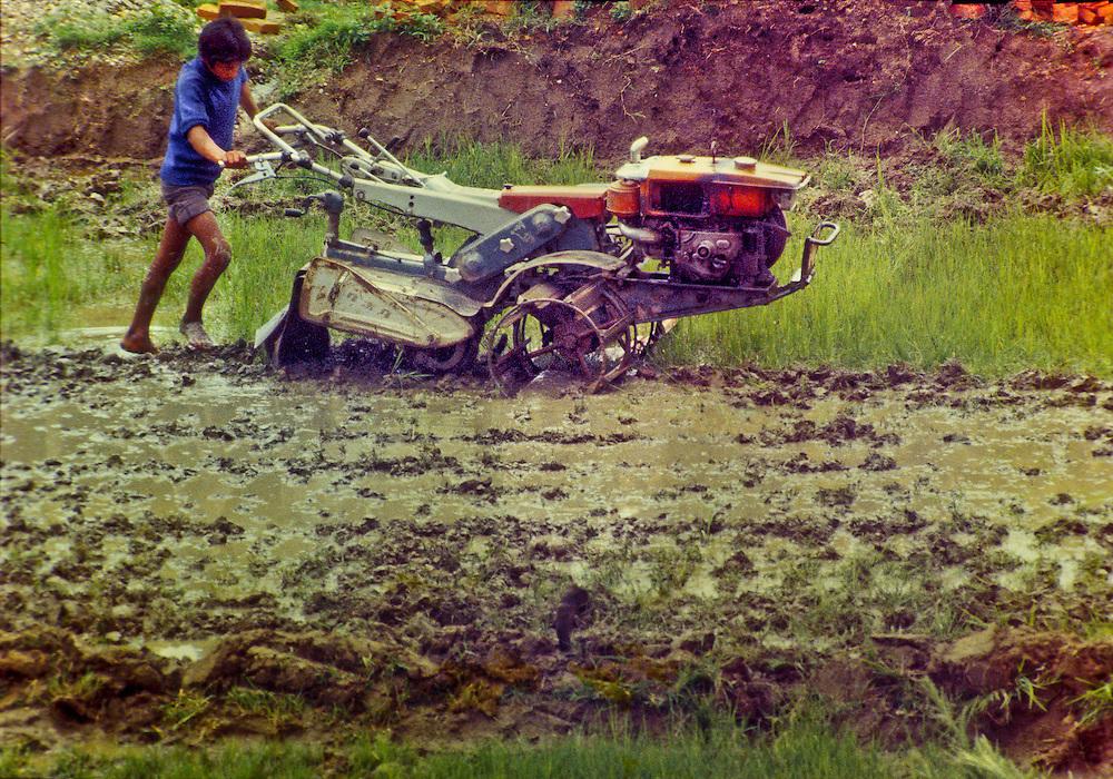 Farming with a power-tiller in Kimtole village in Nepal's Kathmandu Valley