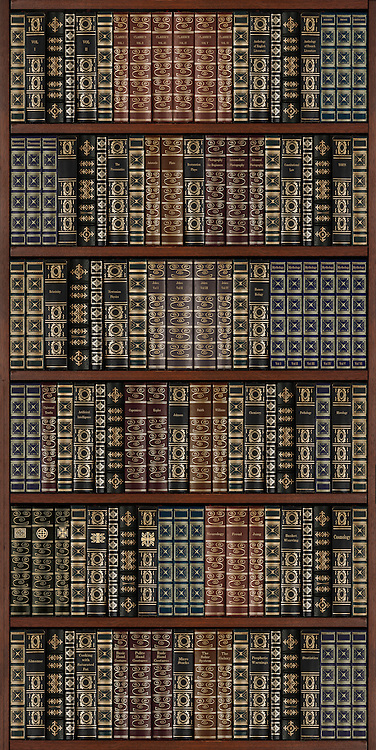 wooden bookcase full of books