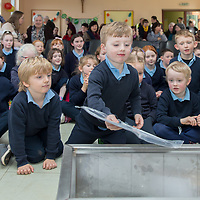 Children from Junior Infants Kilfenora NS put some items into the time capsule