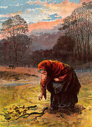 An old woman in a shawl bending stiffly to collect firewood. Kronheim chromolithograph from 'Pictures from Nature' by Mary Howitt (London, 1869).