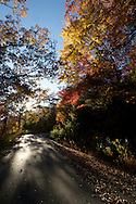 The road to Table Rock, adorned with Fall colors