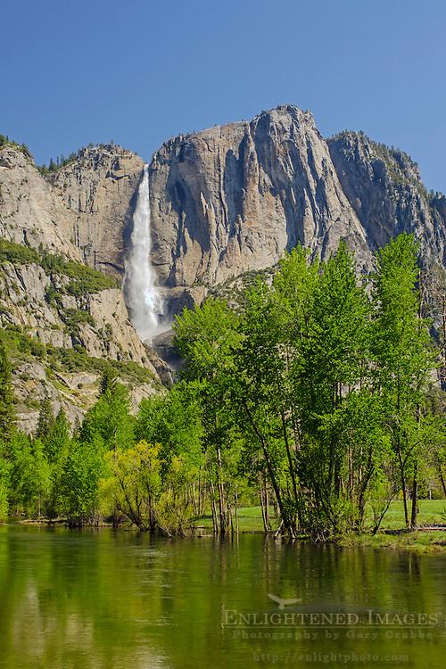 Upper Yosemite Falls from Swinging Bridge, Yosemite Valley, Yosemite National Park, California
