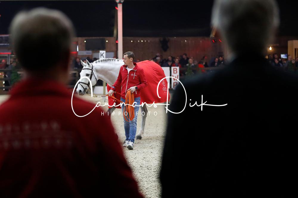 Garfield de Tijl Des Templiers, Van Tricht Tim, fokker, Benali Jean Claude, eigenaar<br /> Hengstenkeuring BWP - Lier 2018<br /> © Hippo Foto - Dirk Caremans<br /> 20/01/2018