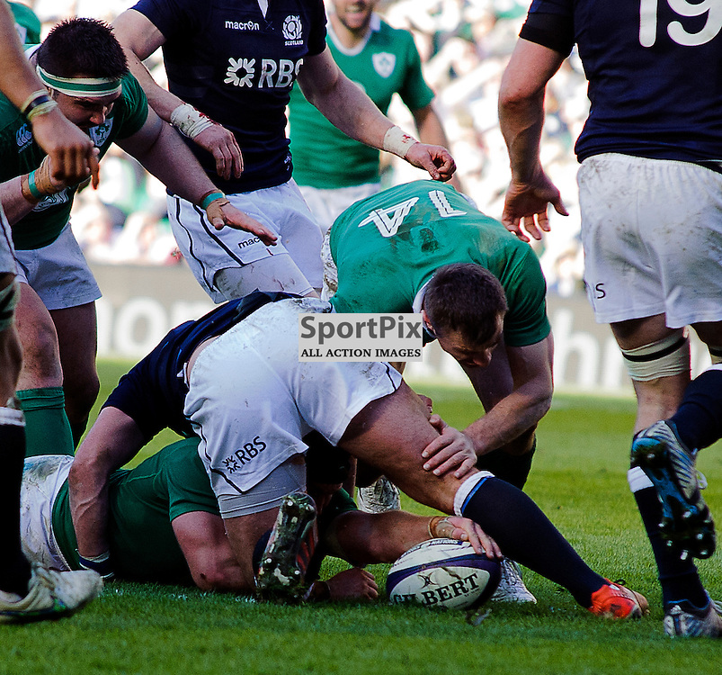 21/03/2015, Murrayfield, Scotland, Sean O'Brien scores his 2nd try of the day during the Scotland v Ireland 6 Nations game, ......(c) COLIN LUNN | SportPix.org.uk