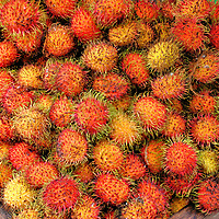 Rambutan Fruit in Kuala Lumpur, Malaysia<br /> Rambutan has its origins in Southeast Asia. During its two peak seasons - June to August and December through January - the fruit is readily available in Malaysian markets plus sold by street vendors. The name comes from the Malay word for hair. This accurately describes the fuzz covering the red and yellow exterior. Inside is a white or pink sweet seed resembling a grape.