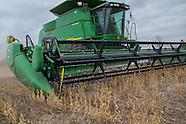 2013 poor crop
