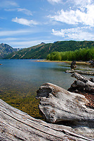 Coldwater Lake which was formed following the 1980 eruption of Mt St Helens, Washington State, USA. Rocks from the eruption blocked a mountain stream to create the lake. 200809020879.<br /> <br /> Copyright Image from Victor Patterson, Belfast, UK<br /> <br /> t: +44 28 9066 1296 (from Rep of Ireland 048 9066 1296)<br /> m: +44 7802 353836<br /> e: victorpattersonbelfast@gmail.com<br /> <br /> www.images4media.com the new website which will ultimately replace  www.victorpatterson.com<br /> <br /> Please see my full Terms and Conditions of Use at https://www.victorpatterson.com/page2<br /> It is IMPORTANT that you familiarise yourself with them.<br /> <br /> Images used on the Internet incur an additional cost and must be visibly watermarked i.e. © Victor Patterson or that of the named photographer within the body of the image. The online image must retain all the original metadata. Any changes must be agreed in writing.<br /> <br /> This image is only available for the use of the download recipient i.e. television station, newspaper, magazine, book publisher, etc, and must not be passed on to a third party. It is also downloaded on condition that each and every usage is notified within 7 days to victorpattersonbelfast@gmail.com.<br /> <br /> The right of Victor Patterson (or the named photographer) to be identified as the author is asserted in accordance with The Copyright Designs And Patents Act (1988). All moral rights are asserted.