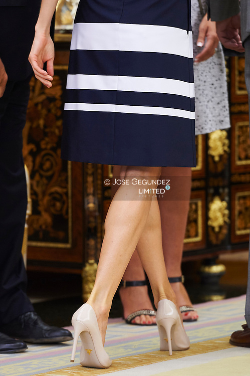 Queen Letizia of Spain attend an audience to the Plenary of the General Council of ONCE Organization at Palacio de la Zarzuela on September 2, 2015 in Madrid