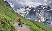 Near Pordoi Pass in Italy, a bicyclist pedals up the Bindelweg/Viel del Pan trail for a majestic perspective on the Queen of the Dolomites, glacier-clad Marmolada (3343 meters / 10,968 feet). Take state highway 48 (Grand Strader delle Dolomiti) to Pordoi Pass and hike up the Padon chain, a ridge of volcanic origin carpeted with lush green pasture and wildflowers. Hike an easy 5 miles with 1000 feet gain round trip to Rifugio Viel del Pan; or walk one way 4 miles to the lift at Porta Vescovo down to Arabba village, where an SAD bus can return you to Pordoi Pass during lift hours; or walk 3 hours to Lago di Fedaia and bus back. Pordoi Pass (or Pordoijoch, 2239 meters/7346 feet) is the highest surfaced road traversing a pass in the Dolomites. The Dolomites are part of the Southern Limestone Alps, in Europe. UNESCO honored the Dolomites as a natural World Heritage Site in 2009.